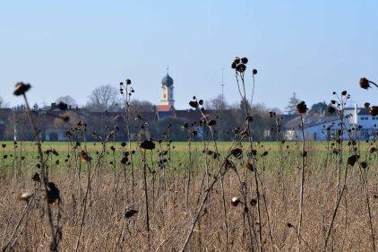 Frühling 2014 Kirchturm