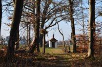 Frühling 2014 Kapelle durch Bäume