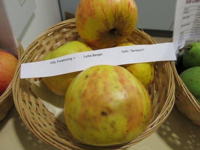 """Apfel """"Berlepsch"""" von Lydia Berger"""