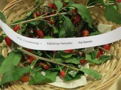 Goij-Beeren von Katharina Heinzeller