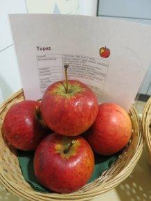 Apfel Topaz von Sieglinde Wagner